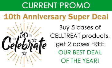 10th anniversary super deal promo