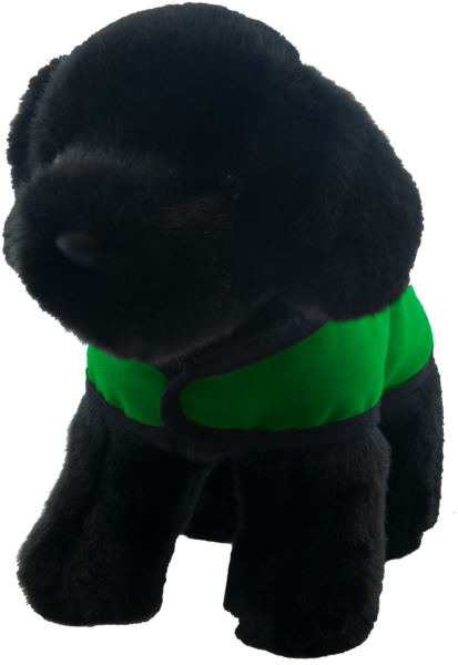 black lab green vest