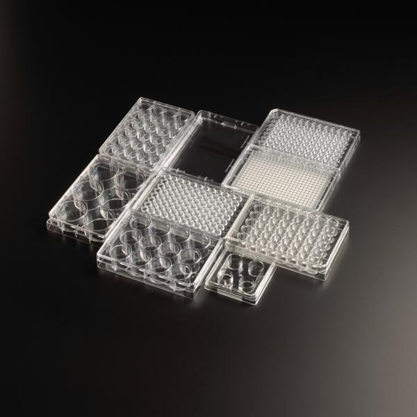 blk199 polystyrene plate family
