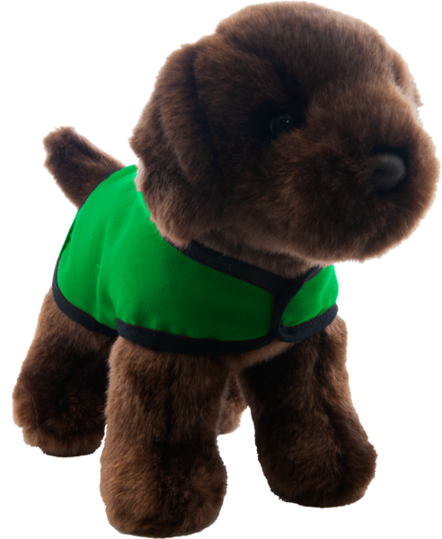 chocolate lab green vest