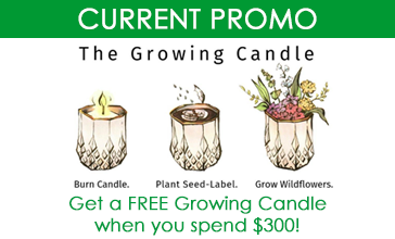 growing candle promotion may 2021 002