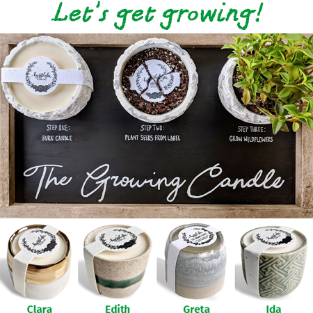 promotion image growing candle may 2021