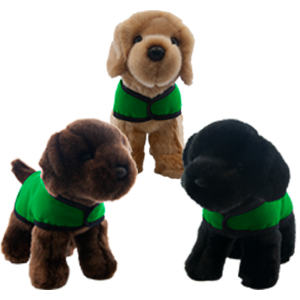 puppy group green vest