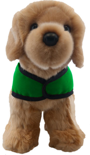 yellow lab green vest